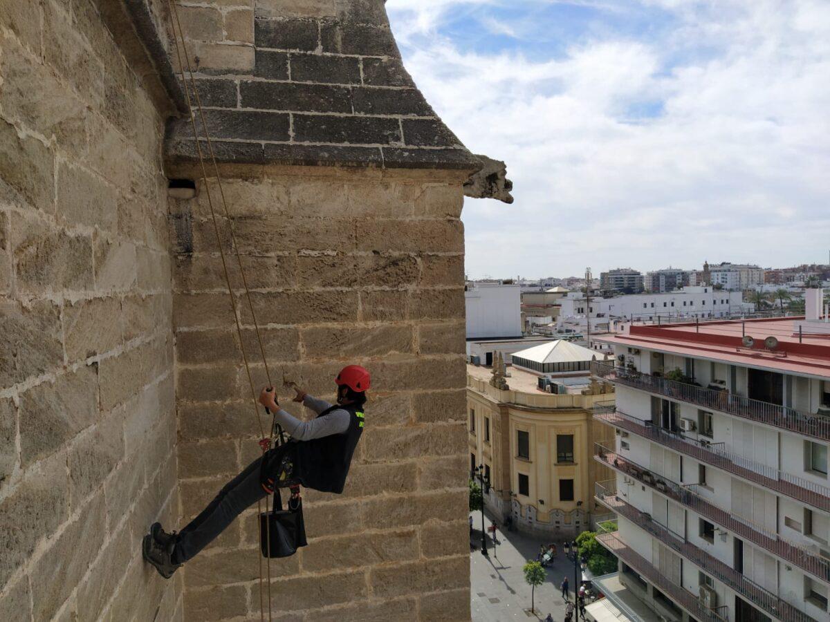 Inpección Puerta San Miguel. Catedral de Sevilla