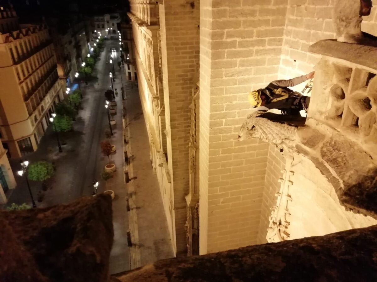 Inspección gárgolas. Catedral de Sevilla.